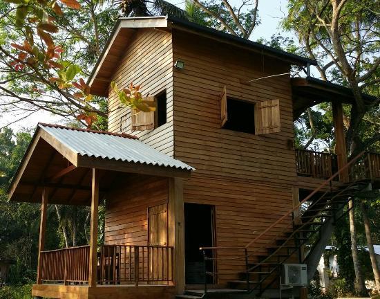 really nice place to stay in wilpattu review of wilpattu tree house rh tripadvisor co za
