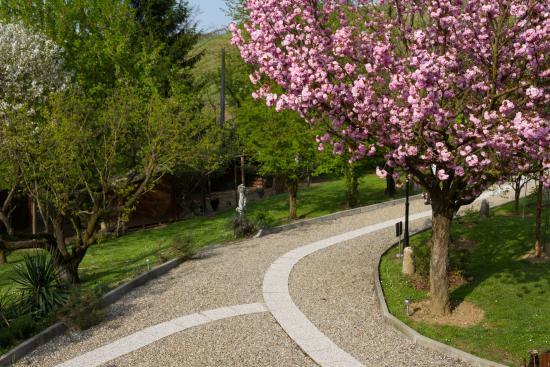 Cigognola, İtalya: i fiori