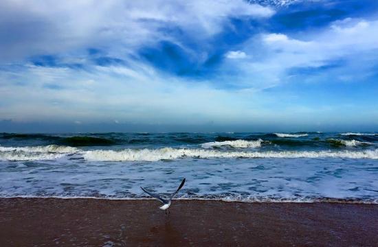 Παραλία St. Augustine, Φλόριντα: Март - прохладно!