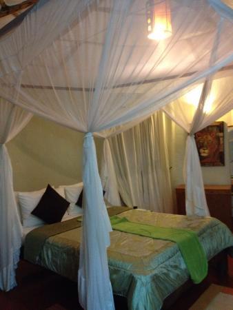 Osupuko Lodge: Lovebird