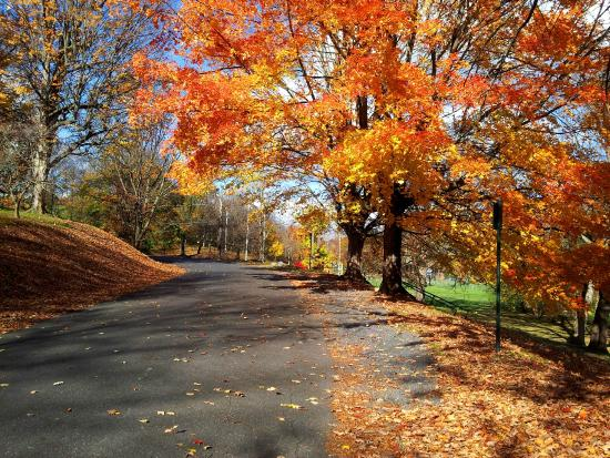 Staunton, VA: Autumn in Gypsy Hill Park