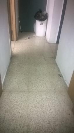 Hibernia Residence & Hostel: Corridor