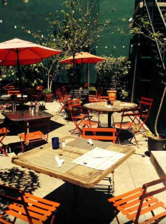 The Backyard At 4518 Patio Of Best French Restaurant In La