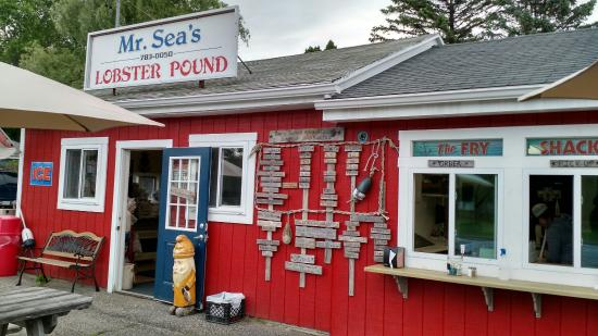 Mr Sea's Lobster Pound