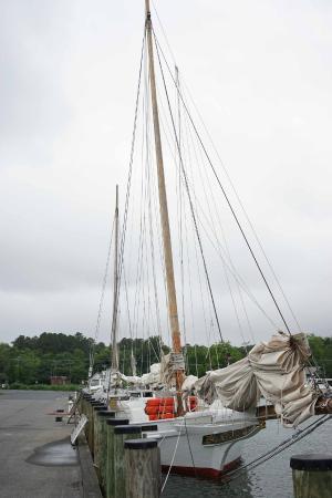 Tilghman Island: SkipJacks