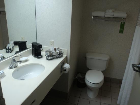 Hampton Inn Buffalo South/I-90: Bathroom