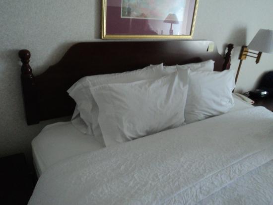 Hampton Inn Buffalo South/I-90: Bed