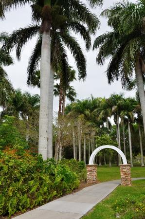 Palma Sola Botanical Garden : Palma Sola BP