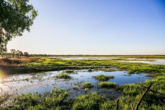 Fogg Dam Conservation Reserve