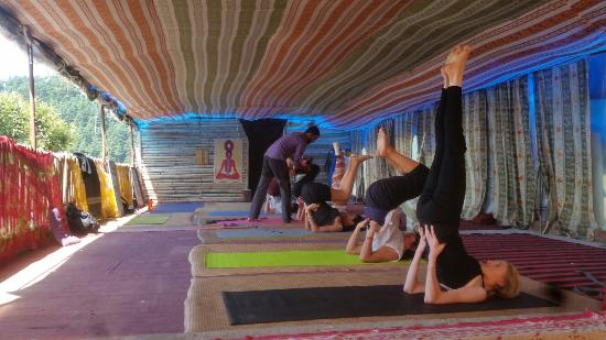 Bhagsu Yoga Institute