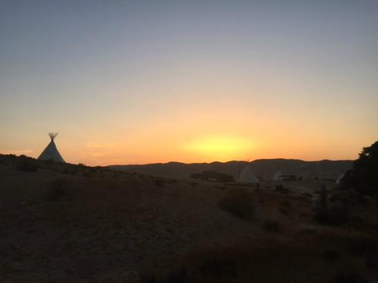 The Desert Olive Farm: View at sunset