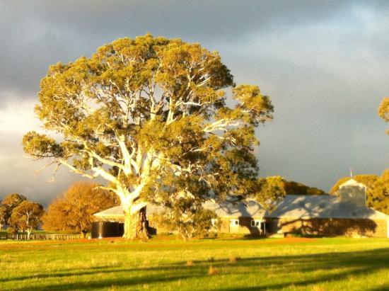 Landscape - South Mokanger Farm Cottages Image