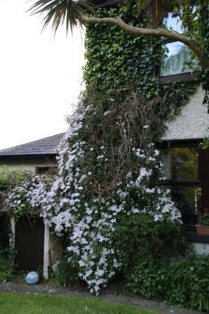 Woodview Farmhouse: Gardens