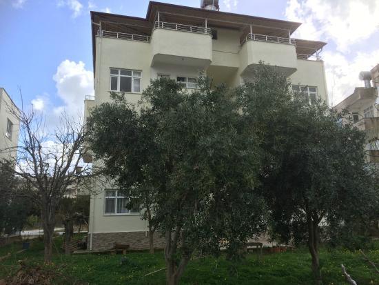Zeytin Apart: The apartment in February