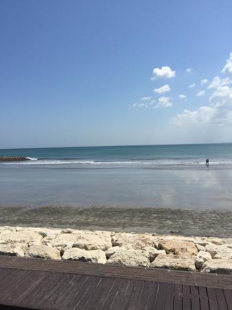 Beach - Ocean 360 Beach Club Photo