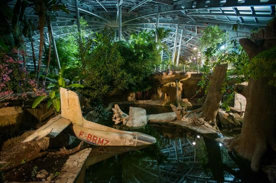 La Planète des Crocodiles: La serre la nuit, une expérience inoubliable
