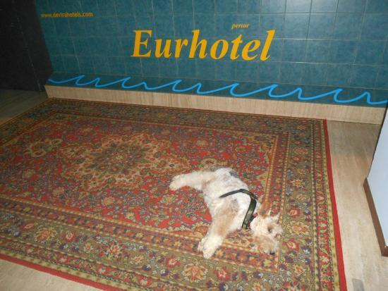 Eurhotel: ingresso