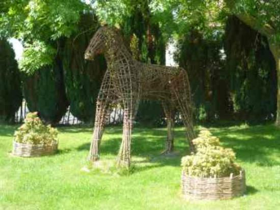 Orchardleigh B & B: Willow the Horse
