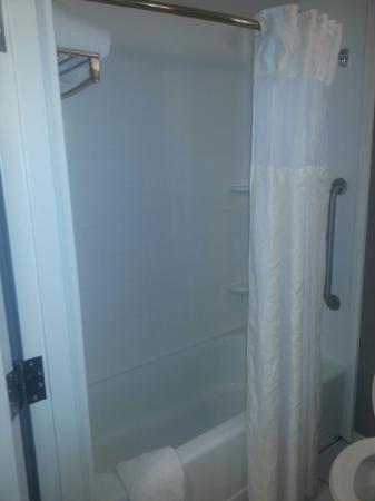 Hilton Garden Inn Louisville Northeast: Shower