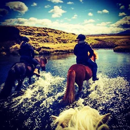 Icelandic HorseWorld Photo