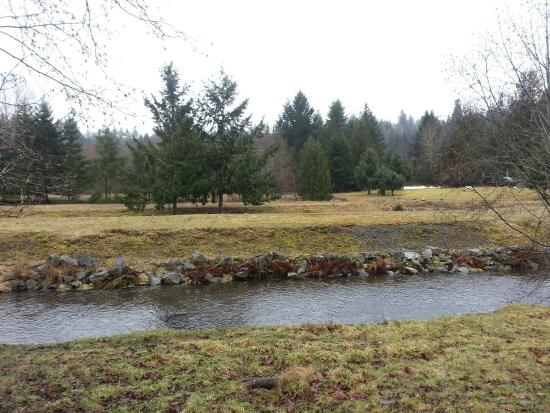 Little Qualicum River Fish Hatchery