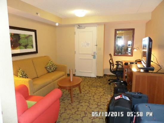 Hilton Garden Inn Buffalo Airport: Large Seperate Sitting Area