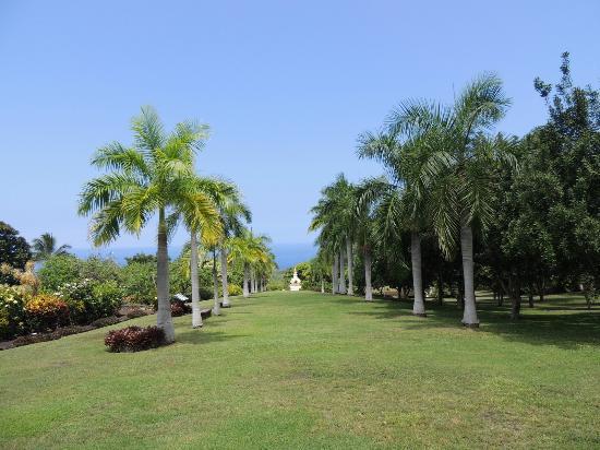 Paleaku Gardens Peace Sanctuary: Garden