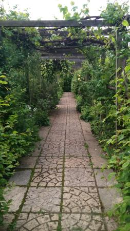 Broadview Gardens: Had The Most Magical Time In These Stunning Gardens. The  Tea Rooms