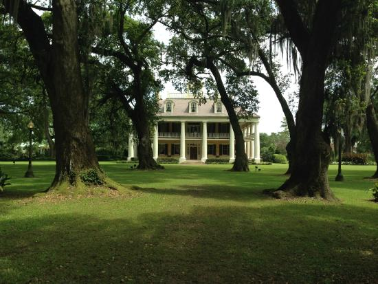 View Of The House From The River Side Through The Alley Of Oaks Picture Of Houmas House