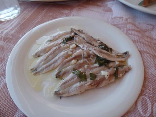 AthensShuttleBus: Best local food