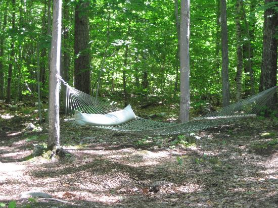 Brownfield, ME: Hammock...careful getting in...very tipsy.