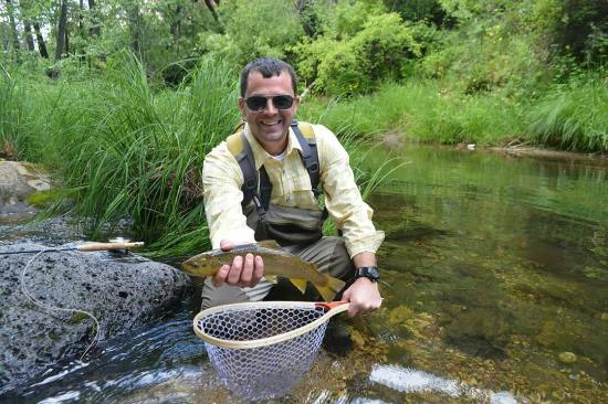 Brown trout oak creek picture of sedona fly fishing for Fishing in arizona