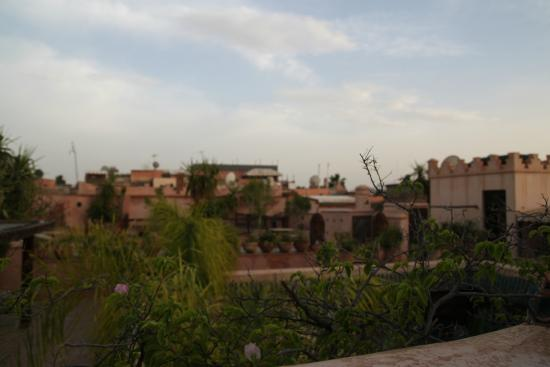Hostel Riad Marrakech Rouge: View from rooftop patio