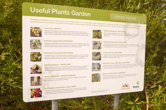 Lismore Rainforest Botanic Gardens