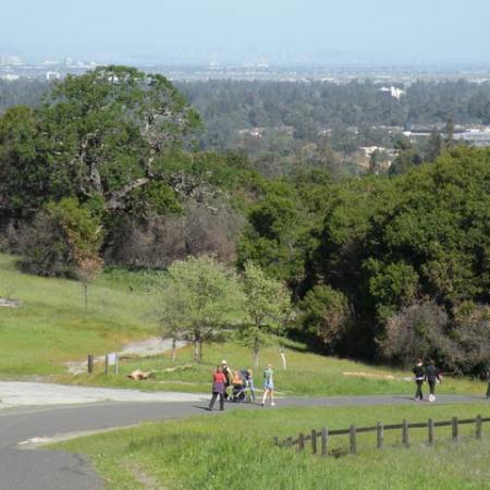 Palo Alto, Califórnia: Heading downhill, back to Silicon Valley
