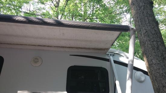 Washington DC, NE KOA: Our awning 1/4 extended because of a tree!