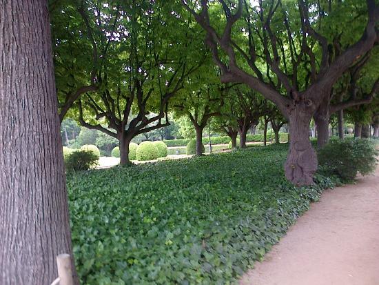 Vista frontal del palacio jardins del palau de les - Jardins del palau ...