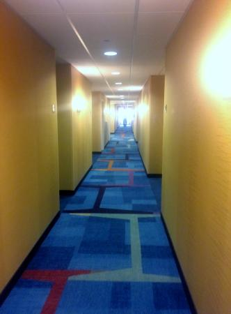 Fairfield Inn & Suites State College: Even the halls were spotless
