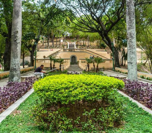 Ezequiel Zamora Park: Jardines