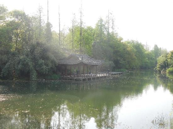 Yanggong Dike : 杨公堤