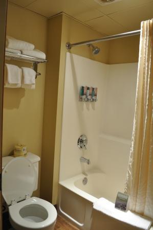 Princess Cruisetour What Room In Hotel Alaska