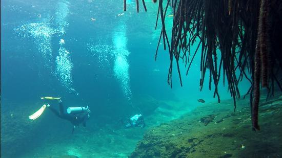 Dive Tulum: Casa Cenote