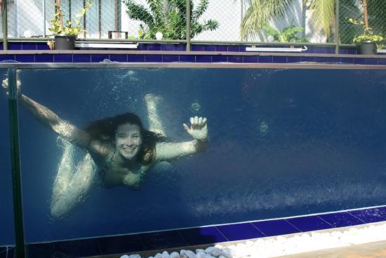 Calamander Unawatuna Beach : Glass fronted lap pool