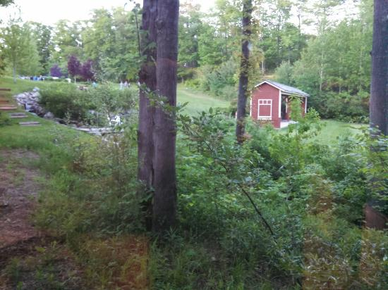 The Homestead: A view from the back porch of Firefly cabin 1, as well as the inside