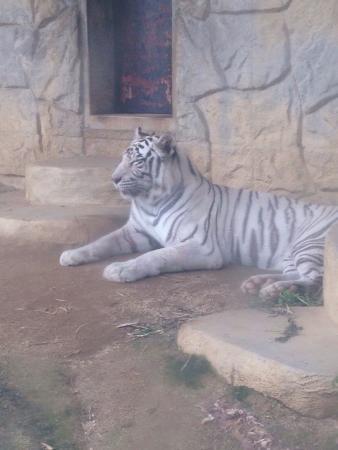 Omuta City Zoo