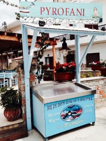 Pyrofani Tavern