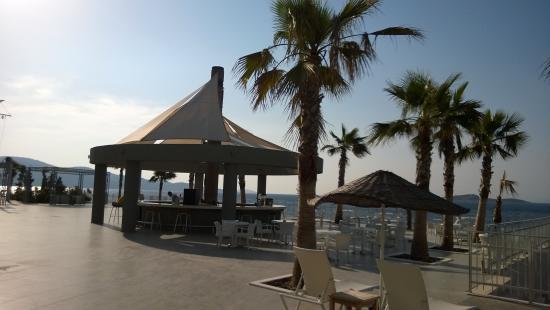 Blue Dreams Resort: Bar przy Infinity Pool
