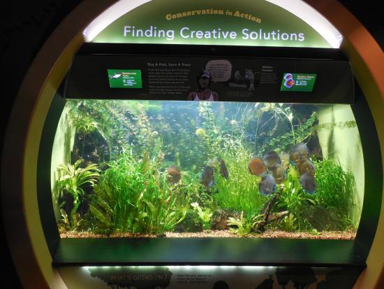 Picture Of New York Aquarium Brooklyn Tripadvisor