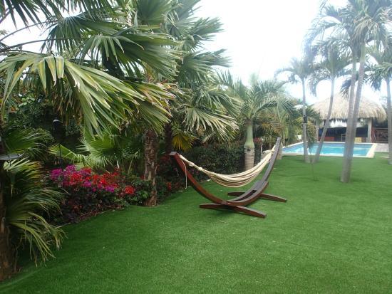 Hibiscus Beach House: tuin
