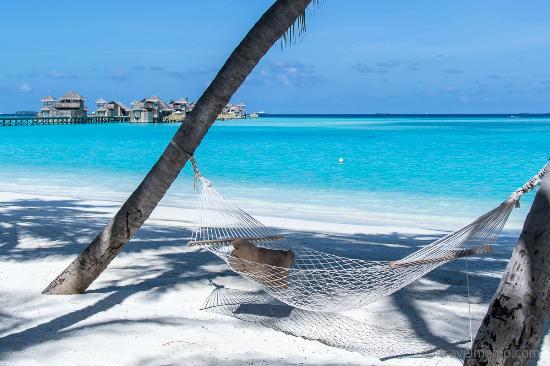 Hammock at the beach - Photo de Gili Lankanfushi Maldives ...